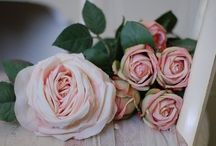 ROSES / by Kathy