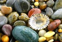 Sea Shells & Rocks...