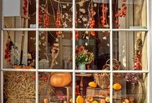autumn merchandising ideas / Tips and tricks on how to prepare your store for autumn. / by aden + anais