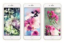 Apple Wallpaper / iPhone'unuza birbirinden güzel ve eğlenceli duvar kağıtları ile yeni bir hava katın!