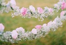 Flowers & Gardens / Flores y Jardnes / Flores y jardines que nos inspiran para los estampados de nuestras invitaciones de boda y eventos