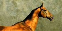 HORSE golden flock, silver, metalic