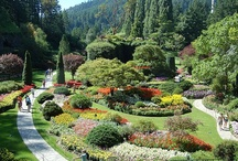 Gardens to Explore / by Linda S