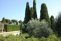 GARDEN, LANDSCAPE & TERRACE / Garden design, different garden styles and show gardens