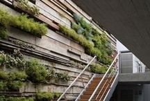 Green wall/ Designs