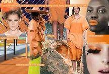 Orange Color Direction / Orange color direction and inspiration.