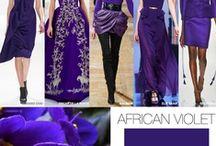 Purple Color Direction / Purple color direction and inspiration.