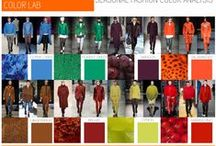 Fall/Winter 2015 Color / Fall/Winter 2015 Color Direction