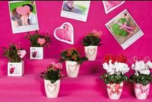 Romance / Mother's day and valentine products. All pots, ceramics, wicker, wood, glass, fabric, have a copyright.