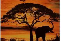 Africa.......