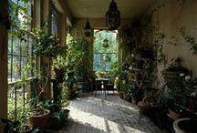 Greenhouses & Garden Rooms