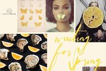 Lemon Drop / we love #lemon #yellow