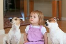 Pet Training Partners