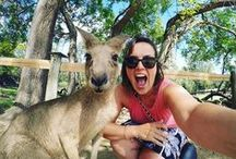 Brisbane / Here at Base we love Brisbane so much that we have 3 hostels in Australia's sunny city! Here's what to do and some other stuff from Brisbane...