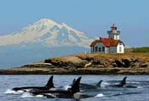 Scenic Pacific Northwest / by Peter Hovde