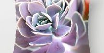 Succulent Floral Parade / Succulents. Floral arrangements. Beautiful blooms and colorful succulents for your garden, home and in decor.