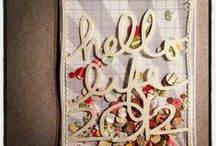 Project Life / Maybe one day I will tackle this...it looks so organized...but in the meantime I still love traditional scrapbooking :)