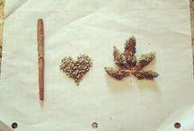 Weed My Love