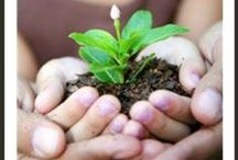 Gardening Activities / Great ideas to help kids get acquainted with Mother Nature!