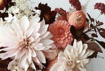 F & O fleurs