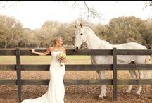 Weddings at The Grand Oaks Resort / Photos of events  at The Grand Oaks Resort, Lady Lake Fl