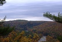 Cook Forest, PA / A magical place that my family traveled to every autumn.   / by Sallie Berg