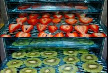 Canning and dehydrating