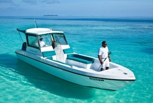 Six Senses Spa Kunfunadhoo, Maldives / Explore the uniquely restorative combination of a stunning tropical environment, invigorating wellness facilities and healing treatments at Six Senses Spa at Soneva Fushi.