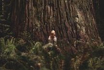 adventure/Explore