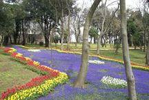 Parques y jardines / Parques y jardines de Estambul