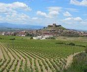 Rioja and Ribera Cycling / Bike tours in the wine region, La Rioja and Ribera.