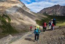 Jasper National Park Hiking