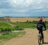 Portugal Cycling / The highlights of our guided bike tour in Portugal.