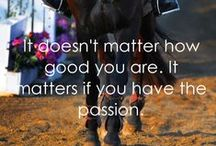 Horses / Lothouse Equestrian's number one passion.. the horse! Check out our board full of all things horsey!