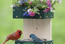 Для птичек / Поилки и кормушки для птиц