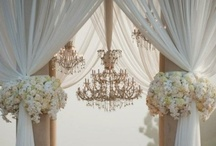 Elegant and Formal Theme / by HolleyV of Lavender Lime Designs