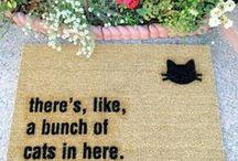 Cat Room / Crazy cat lady essentials