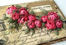 Paper Flowers ✿