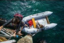 ADVENTURE SEEKERS / Reef Adventure seekers - Passionate dreamers exploring the unknown