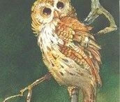 Owls / Original watercolors and prints of owls by Carolyn Shores Wright