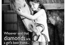 From the Horse's Mouth / Inspiration, Horses, Quotes, Girl with horses, animal lovers, model horses