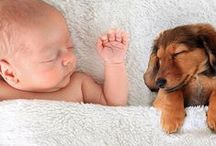 Images We Love / Our pick of some of the great pet images... Prepare to say 'awww'....