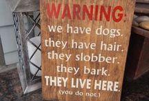Mascotas - perros / Ideas geniales para aquellos que amamos los perros.