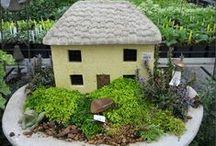 Mini Container Gardens  Miniaturowe ogrody