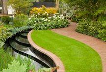 Garden,  ogród