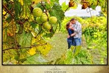 Vineyard Engagement Photos / We are here to make your special day a dream come true! Call us for more information: 1-800-774-9634