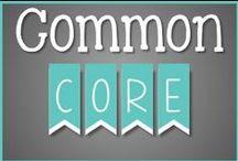 T3 Common Core Standards