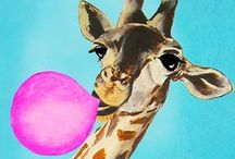 Giraffe Żyrafki / Giraffe plz