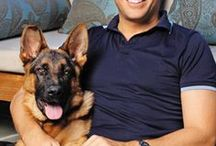 Dogs and Their Celebrity Owners