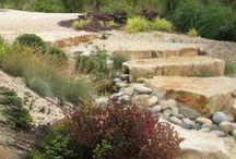 Conseils professionnels pour le jardin / Anne Delahaye, notre architecte paysagiste vous dévoile tous ses secrets pour avoir un jardin qui vous ressemble !